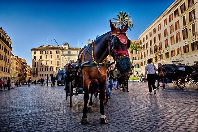 Piazza di Roma, carrozzella trainata da cavallo